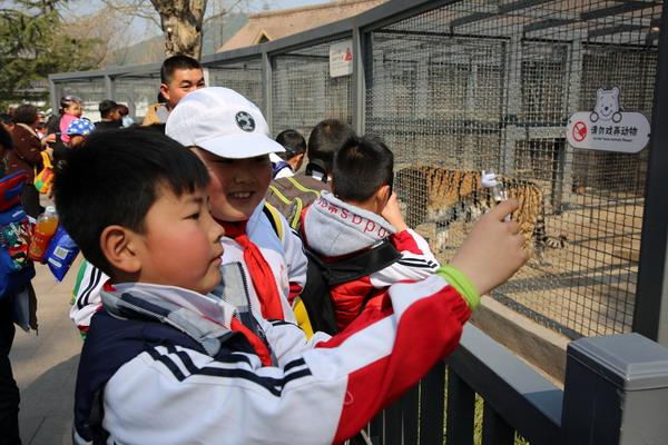 春游动物园 亲近大自然-徐州市大黄山实验小学